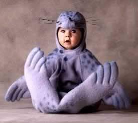 foca, disfraces de bebes
